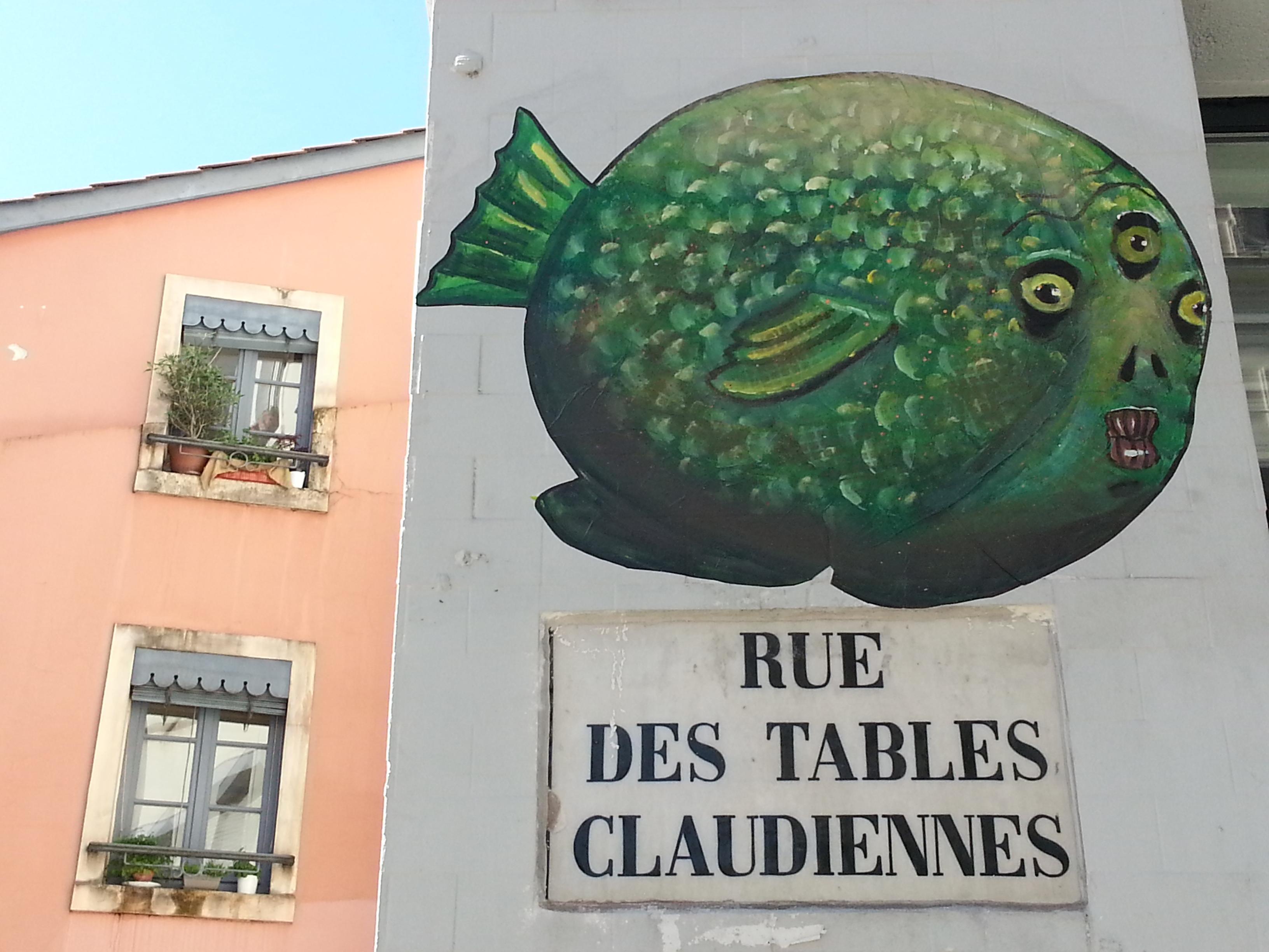 street art pentes croix rousse lyon 11 poisson