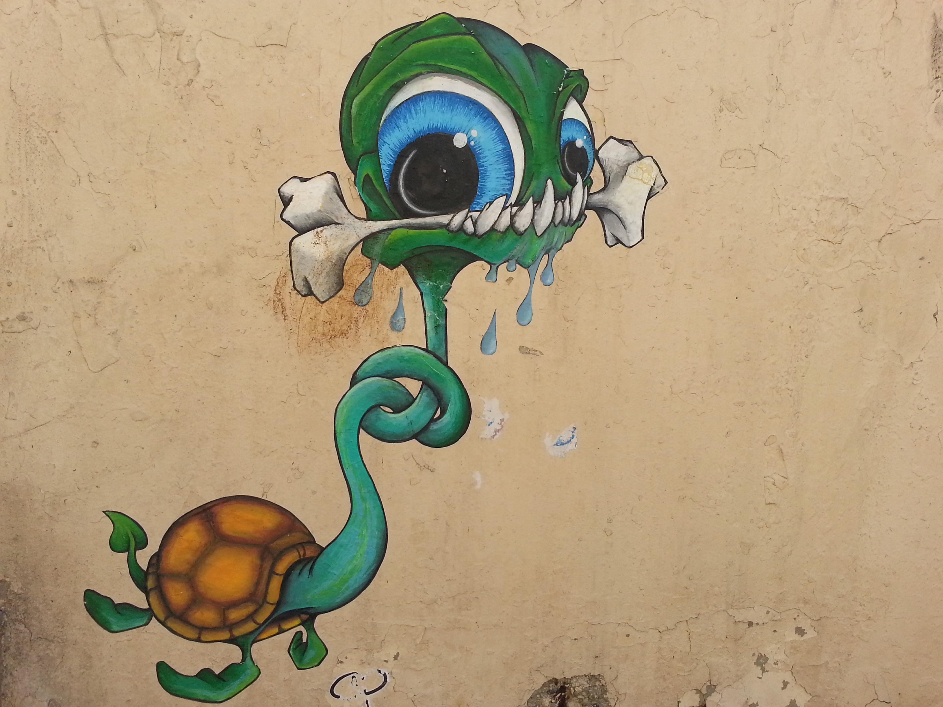 street art pentes croix rousse lyon 4