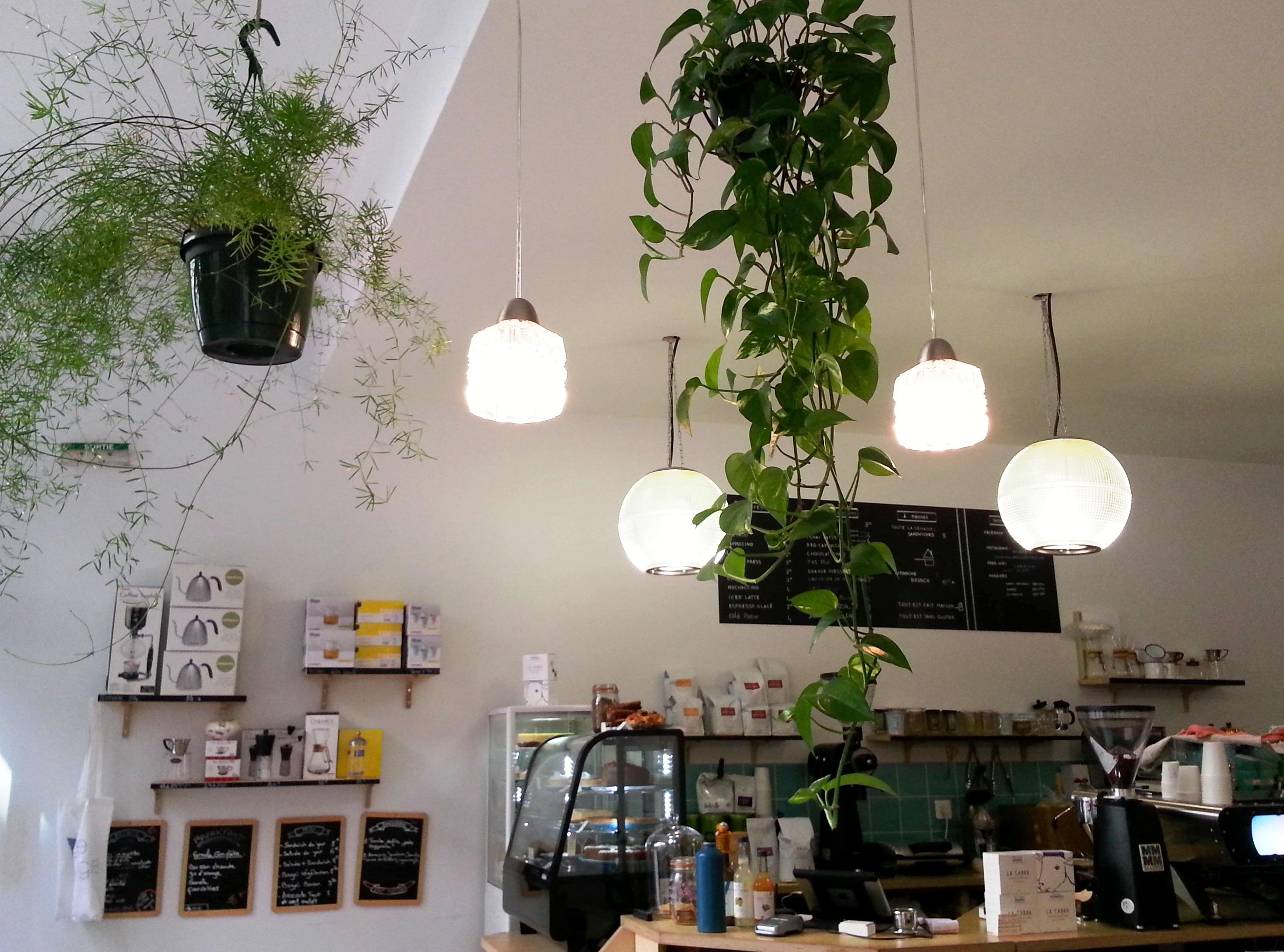 entrée le tigre coffee shop sans gluten lyon cuisine maison