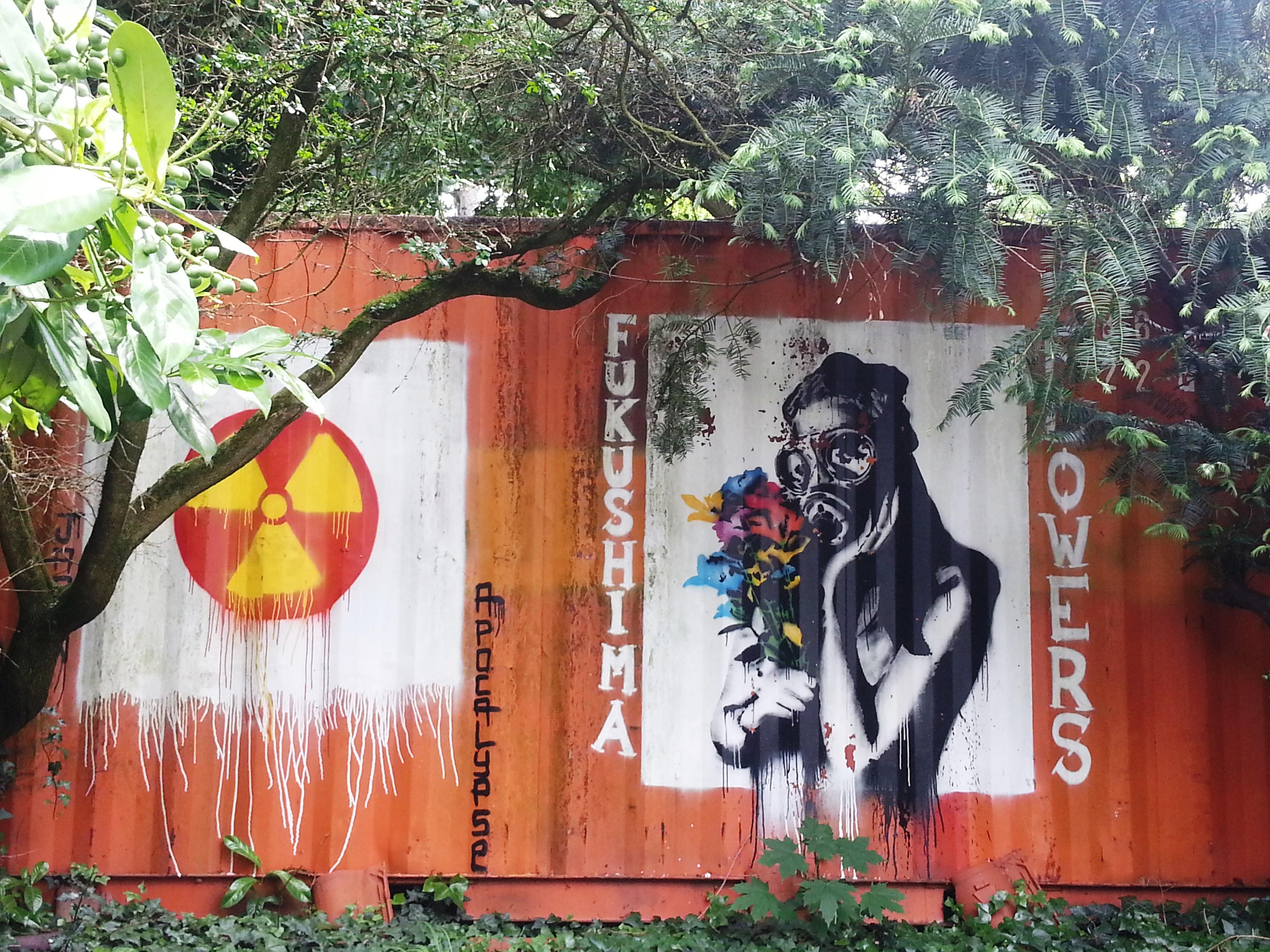 fukushima demeure du chaos