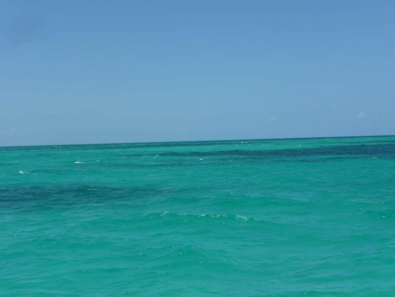 snorkeling avec keys diver key largo