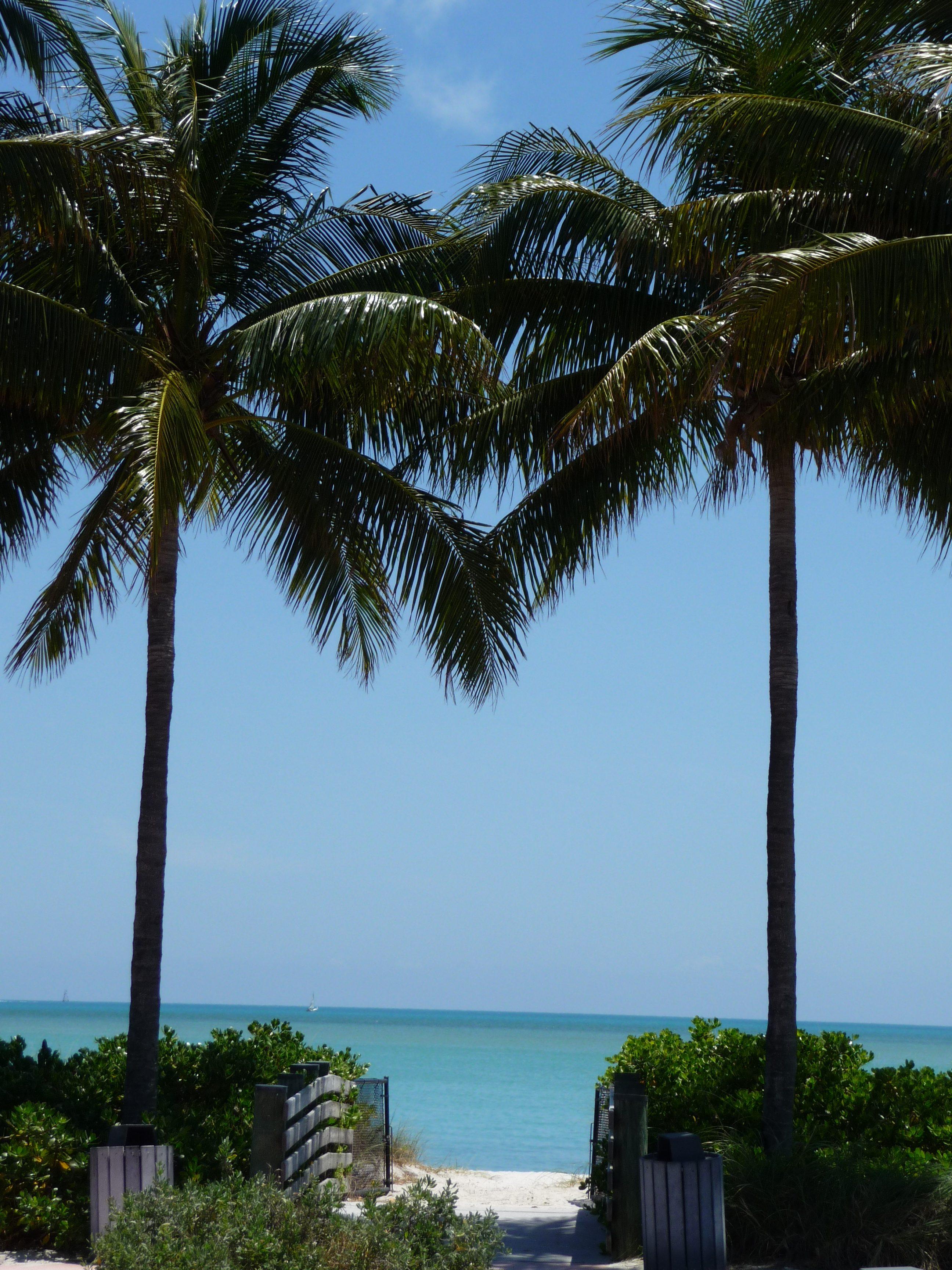 sombrero beach marathon palmiers