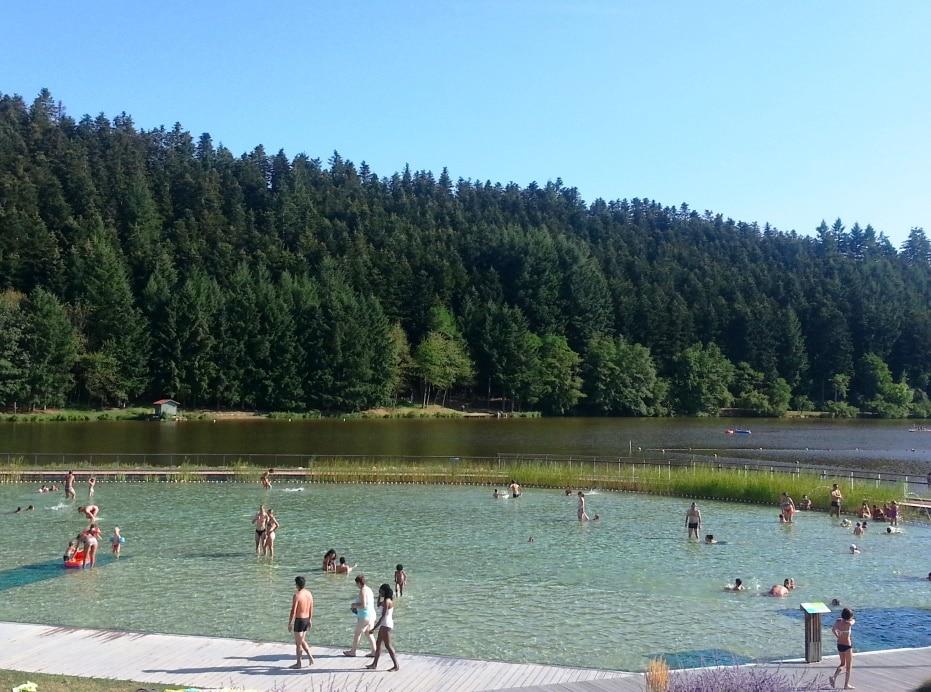 Piscine biologique au lac des sapins happycurio for Piscine du lac tours