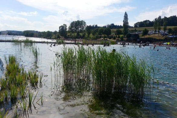lac des sapins cublize piscine bio rhone alpes