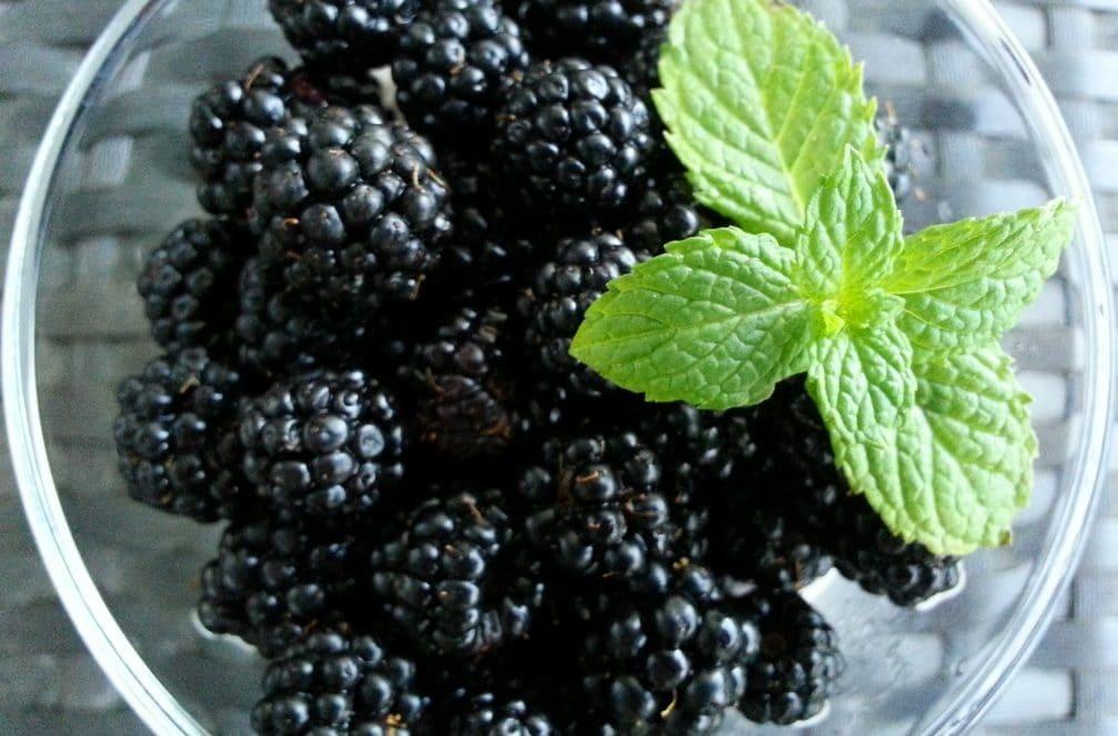 mures mascarpone mousse fruits recette dessert