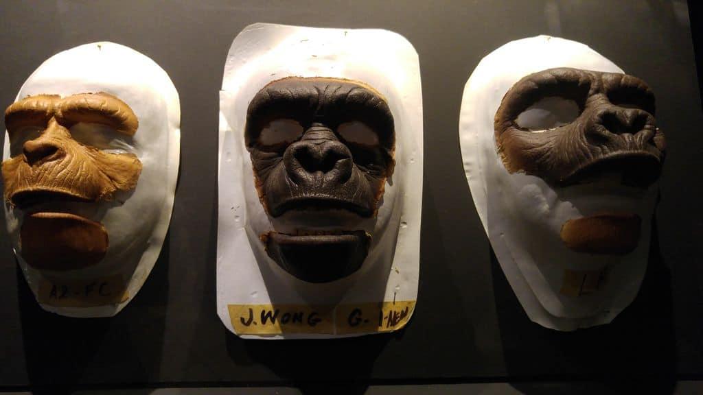 lyon-musee-du-cinema-et-de-la-miniature-singes
