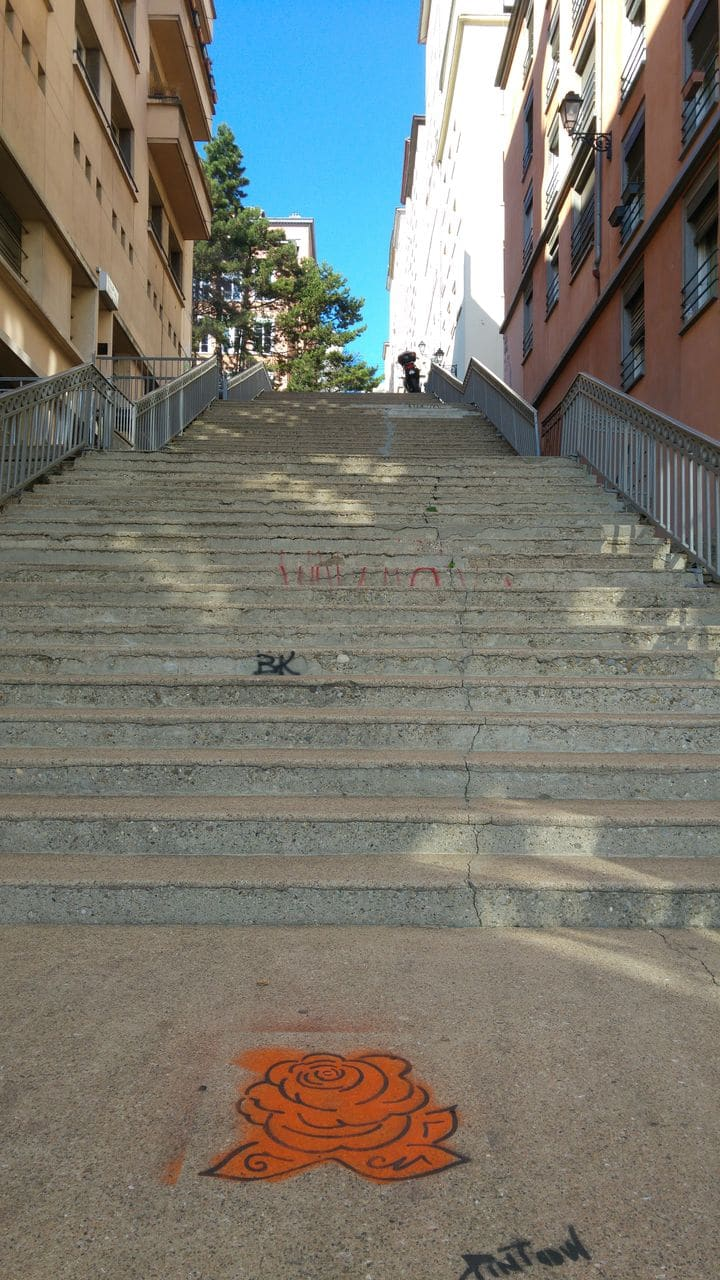 pintow street art lyon