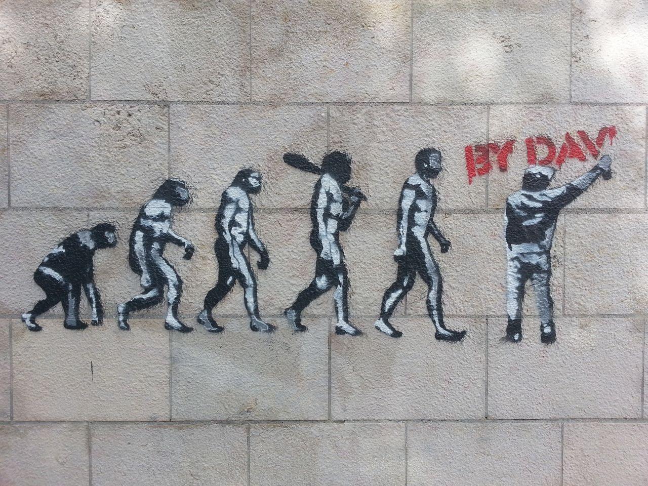 street art montée grande cote lyon by dav