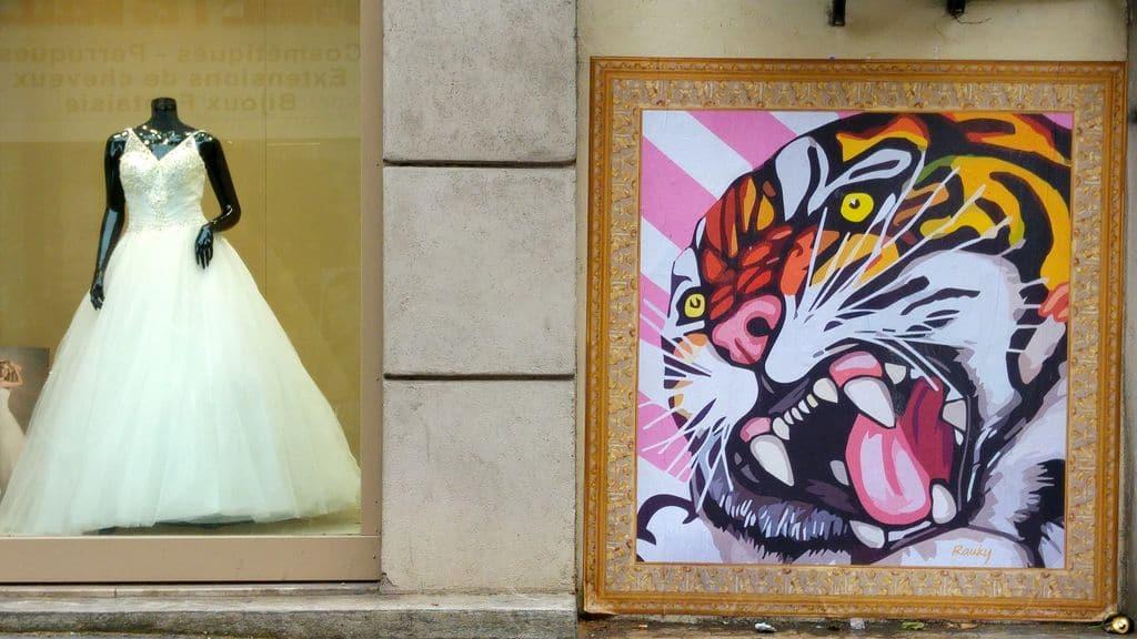 happycurio grande rue de la guillotiere tigre rauky collage