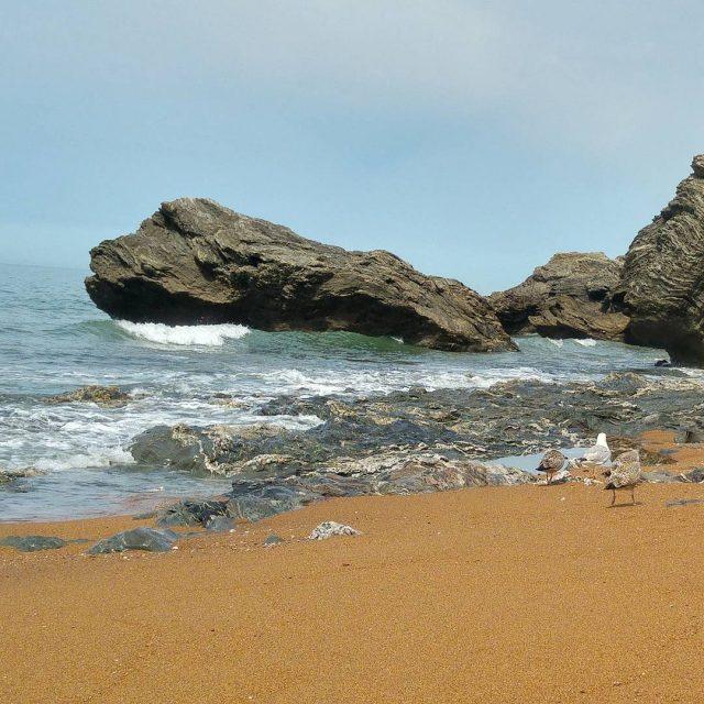 Leau est glaciale mais la plage trs agrable travel travelgramhellip