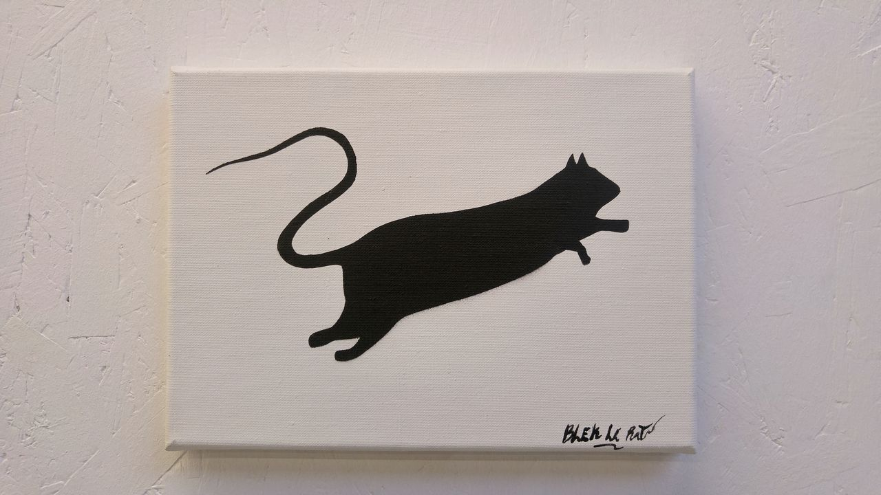 happycurio aerosol street art blek le rat expo