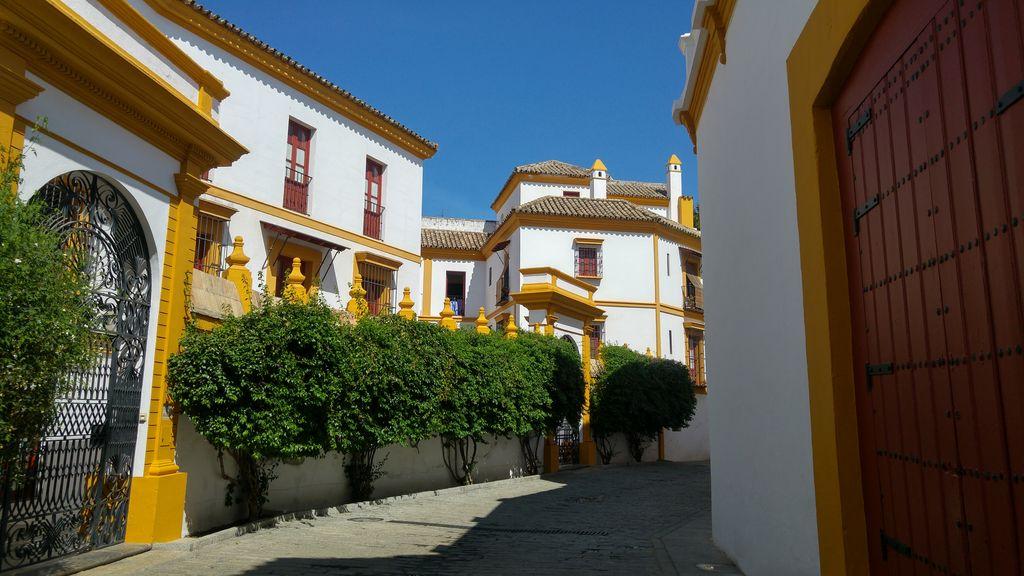 real maestranza seville visite