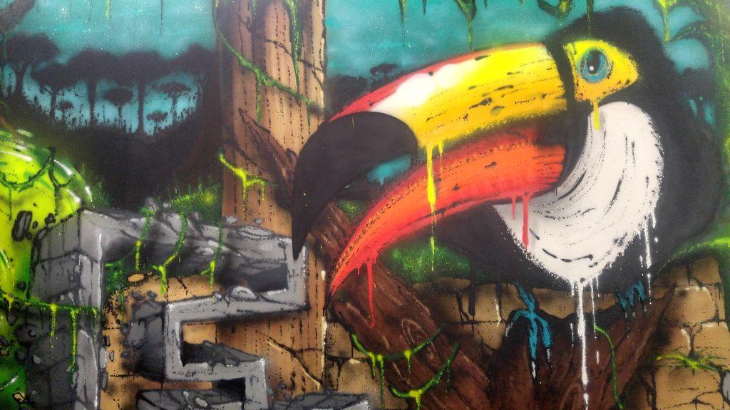 zoo art show koey 84 toucan art urbain lyon