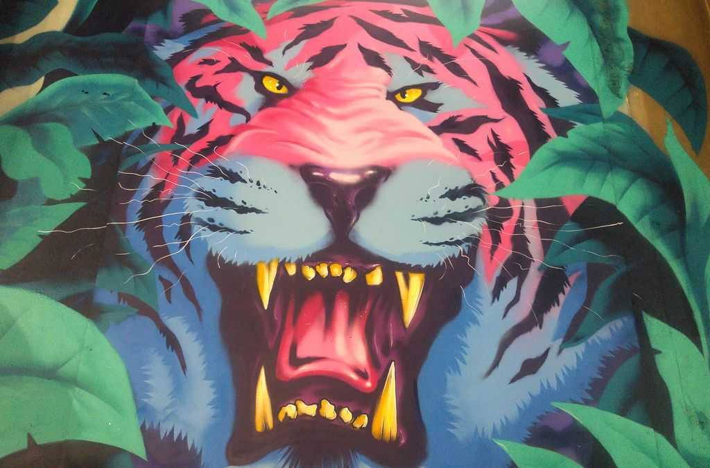zoo art show tigre azed street art lyonnais