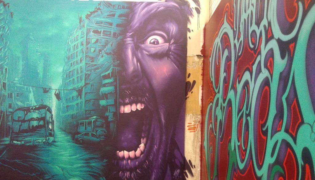 zoo art shwo aero zeyo street art lyon