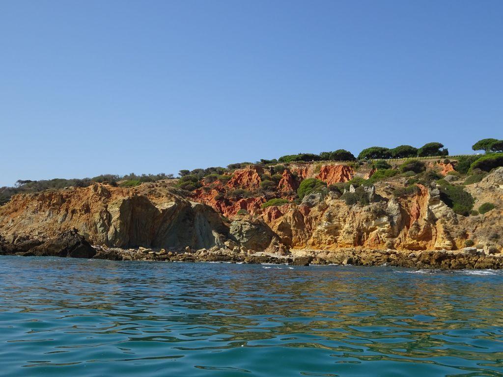 happycurio sortie en mer falaises