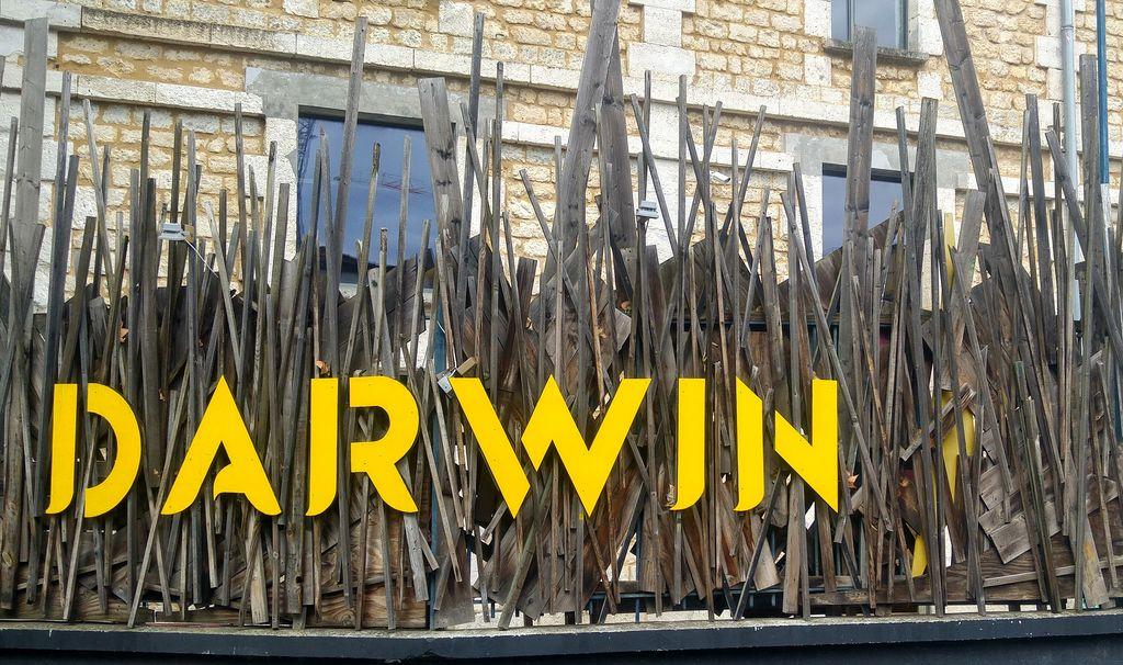 happycurio darwin ecoprojet street art bordeaux rive droite