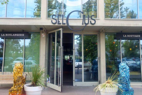 happycurio selcius lyon restaurant confluence