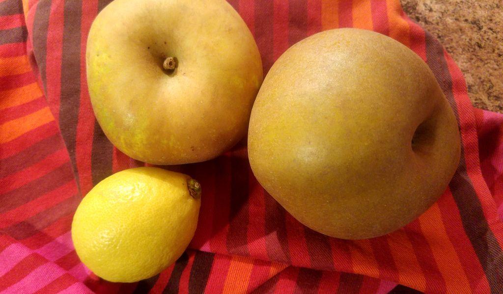 recette chips de pomme au four