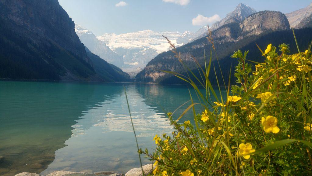 lac louise canada parc de banff