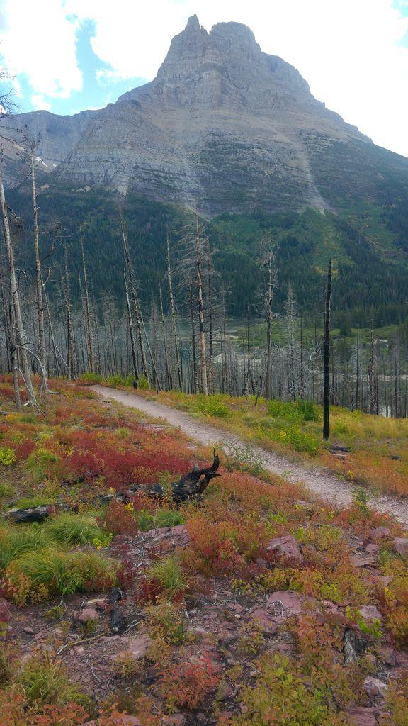 nature parcs nationaux usa
