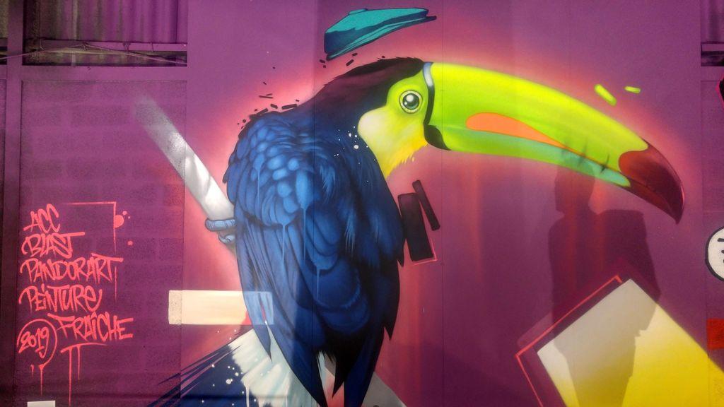 kalouf toucan peinture fraiche