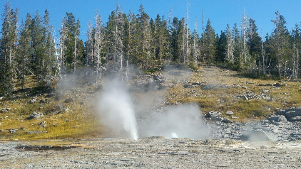geyser en activité usa