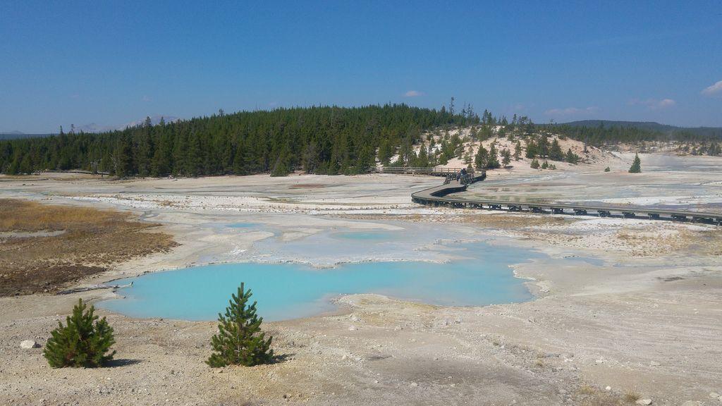 norris geyser basin balade nature