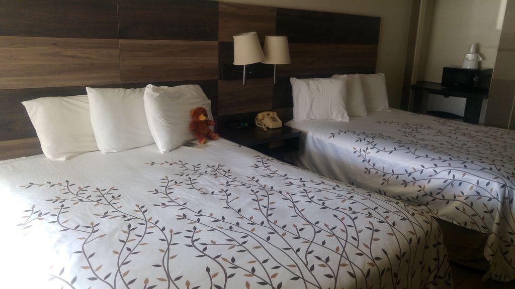 roosevelt inn hotel mont rushmore