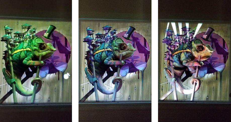 exposition bestiaire lyon art urbain