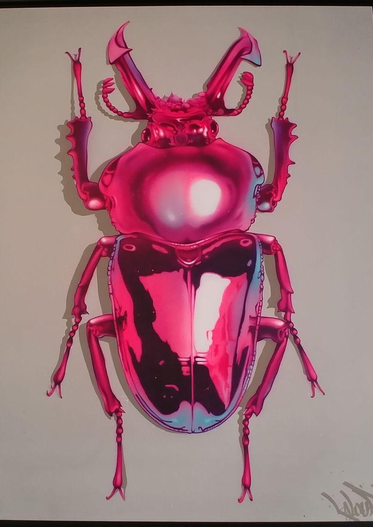 kalouf scarabee bestiaire