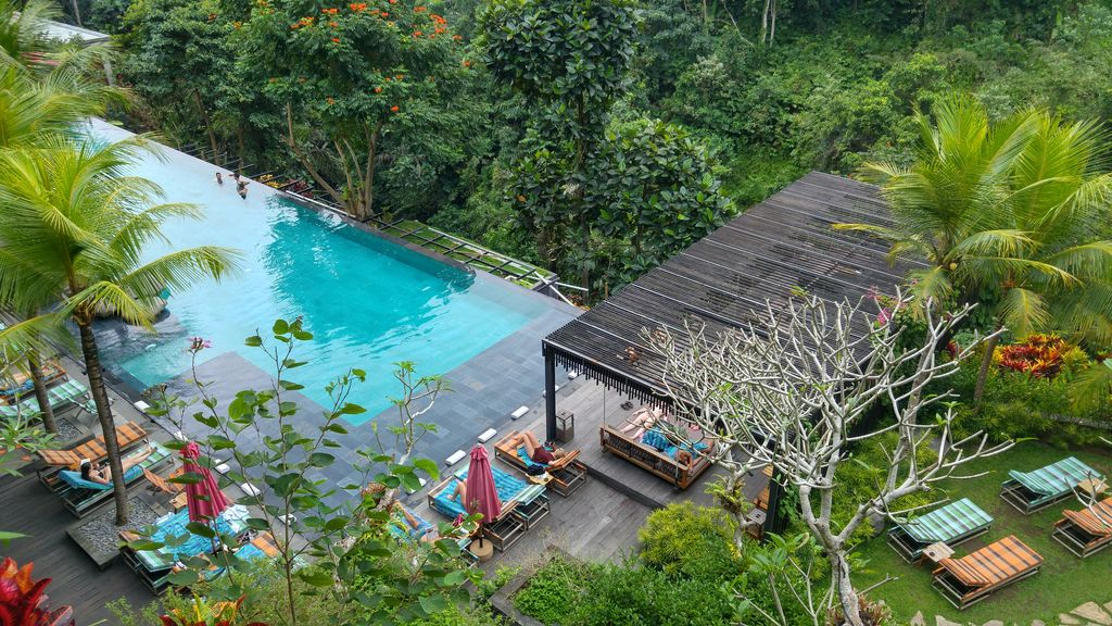 piscine jungle fish vue du restaurant