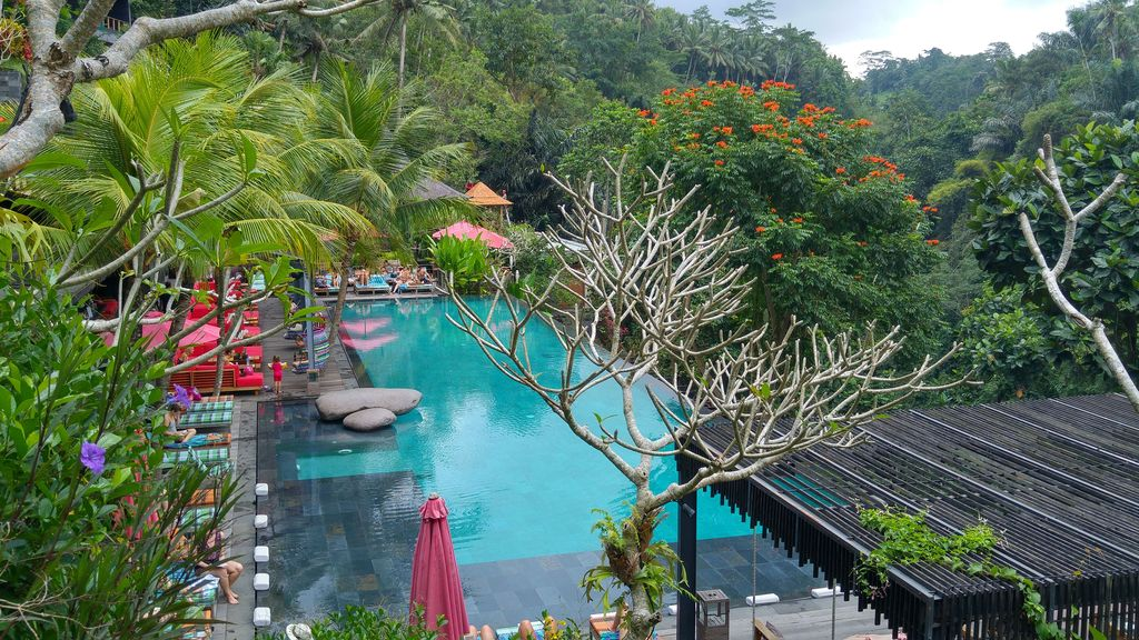 grande piscine du jungle fish bali