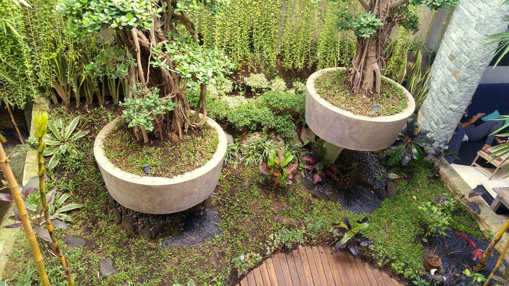 jardin tropical interieur du clear cafe ubud