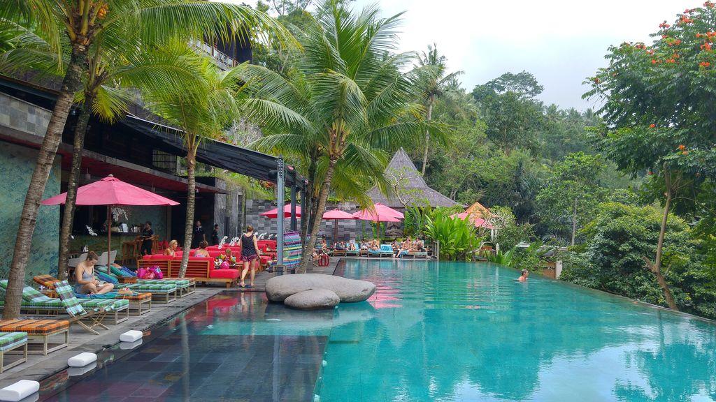 piscine en pleine jungle vers ubud
