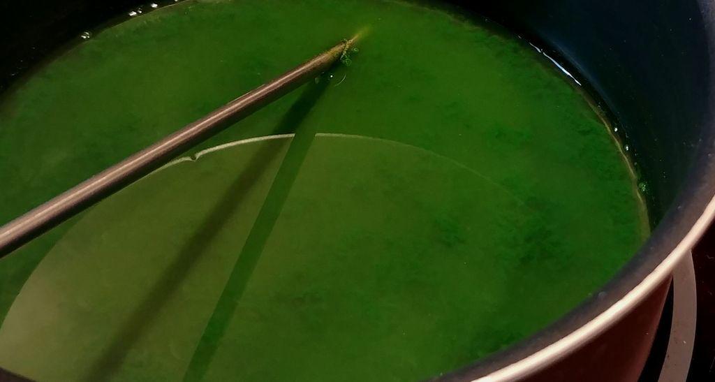 colorant vert naturel avec epinards