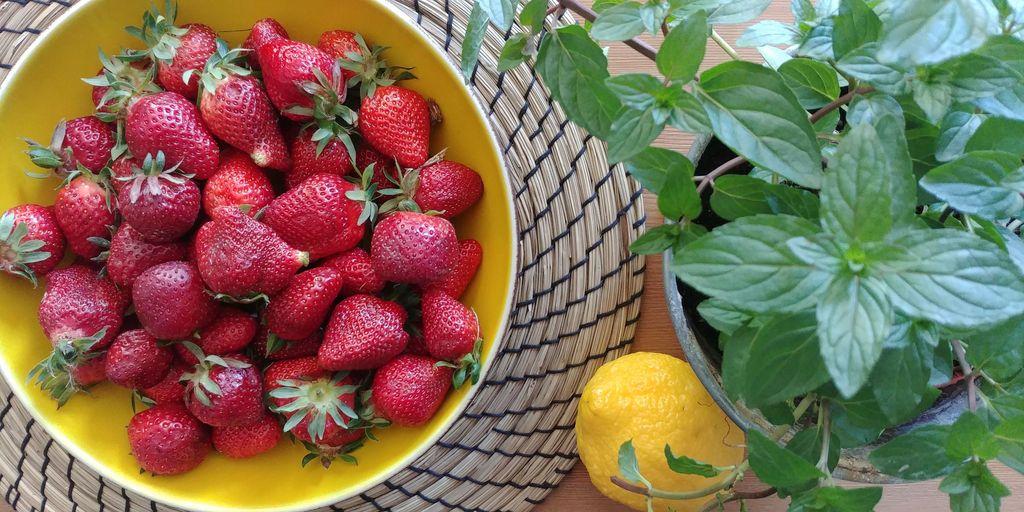 plat de fraises, citron et pot de menthe