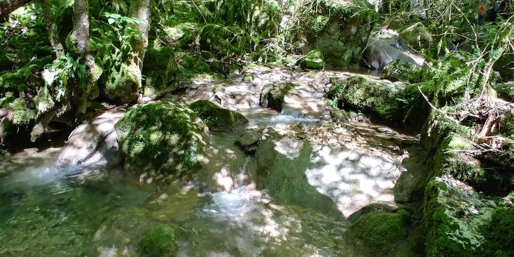 riviere menant à la cascade de la fouge
