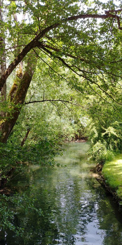 canal vert de nantua