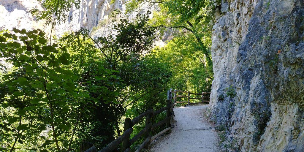 chemin pour accéder à la grotte