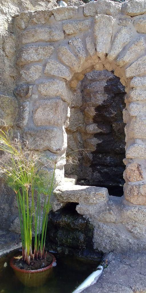 fontaine et papyrus